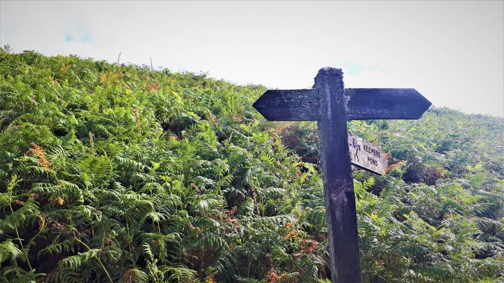 The wooden signpost that you will pass when descending the rocky path