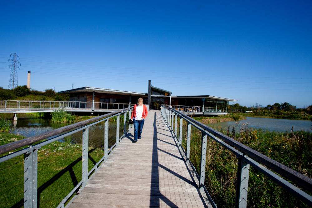 One of the walkways above the marsh land leading to the visitor centre. ©  Visit Monmouthshire